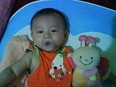 洋洋哥_0歲6~7個月:DSC00549.JPG
