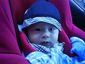 洋洋哥_0歲6~7個月:DSC00554.JPG