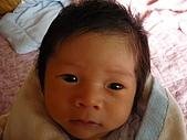 洋洋哥_0歲1個月:P1000045.JPG