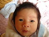 洋洋哥_0歲1個月:P1000047.JPG