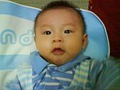 洋洋哥_0歲6~7個月:DSC00560.JPG