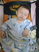 洋洋哥_0歲4~5個月:影像027.jpg