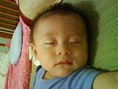 洋洋哥_0歲6~7個月:DSC00564.JPG