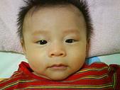 洋洋哥_0歲4~5個月:DSC00496.JPG