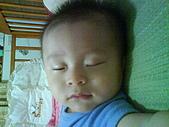 洋洋哥_0歲6~7個月:DSC00565.JPG
