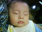 洋洋哥_0歲6~7個月:DSC00566.JPG