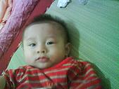 洋洋哥_0歲6~7個月:DSC00567.JPG