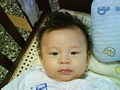 洋洋哥_0歲4~5個月:DSC00503.JPG