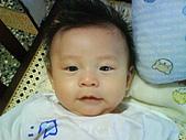 洋洋哥_0歲4~5個月:DSC00505.JPG
