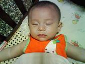 洋洋哥_0歲4~5個月:DSC00512.JPG