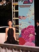 2006金馬獎星光大道‧明星踏入紅地毯:DSC00101