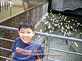 ◤煜-淺家小犬:2007.10.27 鶯歌桃園一日遊 6