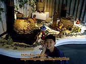 ◤煜-淺家小犬:2007.10.27 鶯歌桃園一日遊 14