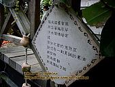 ◤空間の品味寫真:96.12.09 東山咖啡大鋤花間 2