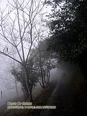 ◤情人:東埔-濃霧中的爸媽