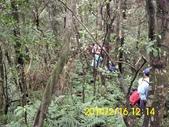 雙溪區柑腳山:DSCI0020.jpg
