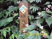 哈盆越嶺古道:DSCI0030.jpg