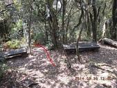 白雞山雞罩山:DSCN0212.JPG