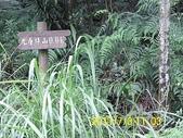光明寺 上鹿窟崙 秀峰瀑布:DSCI0026.jpg