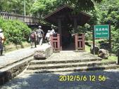 十六分山 茶葉古道:DSCI0060.jpg