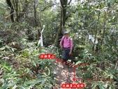 白雞山雞罩山:DSCN0223.JPG