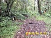 雙溪區柑腳山:DSCI0030.jpg