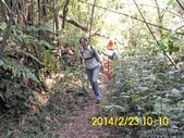 四面頭山 鵝角格山:DSCI0021.jpg
