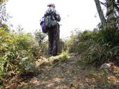 白雞山雞罩山:DSCN0227.JPG