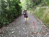 新林步道 老公仔崎步道:DSCN0976.JPG