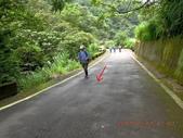 林口大坑步道 陳厝坑山:DSCN1178.JPG