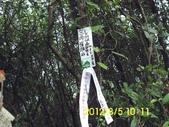 三角嶺頭山 臥虎山 內木山:DSCI0051.jpg
