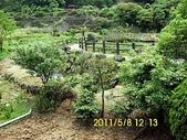 陽峰古道暨竹子湖聚餐:DSCI0038.jpg