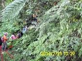 四面頭山 鵝角格山:DSCI0025.jpg