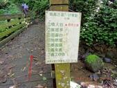 苗栗鳴鳳古道 番子寮山:DSCN1208.JPG