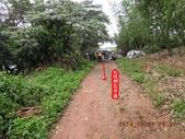 林口大坑步道 陳厝坑山:DSCN1144.JPG