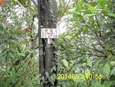 學頭坡山老鷲尖:DSCI0031.jpg