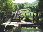 十六分山 茶葉古道:DSCI0037.jpg