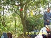 四面頭山 鵝角格山:DSCI0056.jpg
