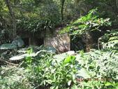白雞山雞罩山:DSCN0164.JPG