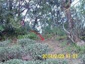四面頭山 鵝角格山:DSCI0032.jpg