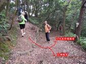 林口大坑步道 陳厝坑山:DSCN1160.JPG