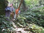 白雞山雞罩山:DSCN0177.JPG