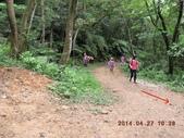 新林步道 老公仔崎步道:DSCN0990.JPG