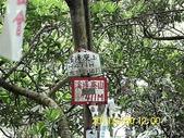 石碇石龜岩展望台-筆架連陵-溪邊寮山:DSCI0143.jpg