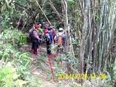 四面頭山 鵝角格山:DSCI0034.jpg