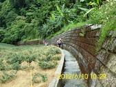 翡翠水庫後花園探路:DSCI0087.jpg