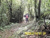 雙溪區柑腳山:DSCI0013.jpg