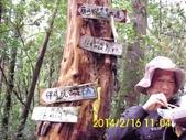 雙溪區柑腳山:DSCI0015.jpg