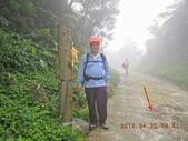 南勢坑古道 雞母嶺山:DSCN0914.JPG