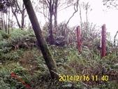 雙溪區柑腳山:DSCI0018.jpg